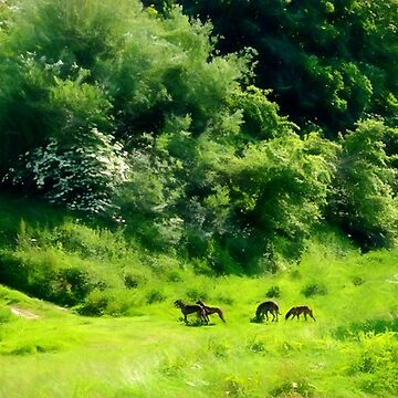Greyhounds in the green by missmoneypenny