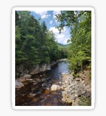 River running through a New Hampshire wood Sticker