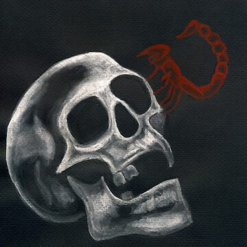Skull + Scorpion by moosesquirrel