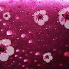 Flowers n Bubbles by oddoutlet