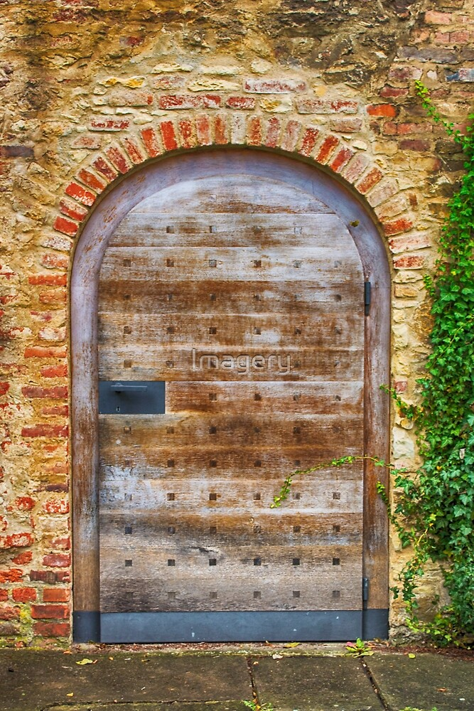 Doors Of Prague #1 by Imagery