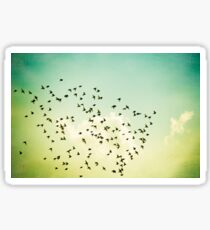 Birds Flying Photography, Birds Fly Sky, Mint Turquoise Yellow Sticker