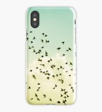 Birds Flying Photography, Birds Fly Sky, Mint Turquoise Yellow iPhone Case