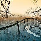 Freezing Fog - Brotherswater. UK by David Lewins