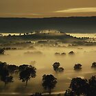 Moonlit mist, Ovens Valley by Kevin McGennan