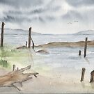 Low Tide by Diane Hall