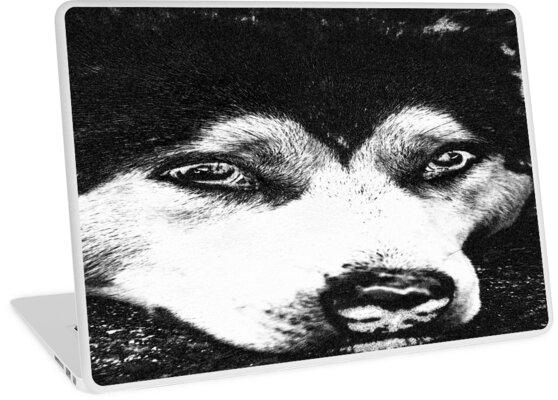 Charcoal Husky by RefreshAzure
