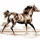 Spring Fever Stallion 2 by Patricia Howitt