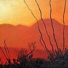Sonoran Sundown by James Lindsay