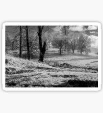Snowy Recovery- Black & White Sticker