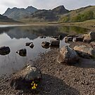 Langdale Pikes and Blea Tarn by derekbeattie