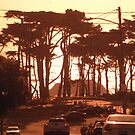 Clement Street, San Francisco by Igor Pozdnyakov