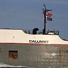 Calumet Closeup 2 061518 by marybedy