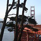 Golden Gate Bridge from the Oceanside Walk. 2011 by Igor Pozdnyakov