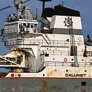 Calumet Closeup 061518 by marybedy