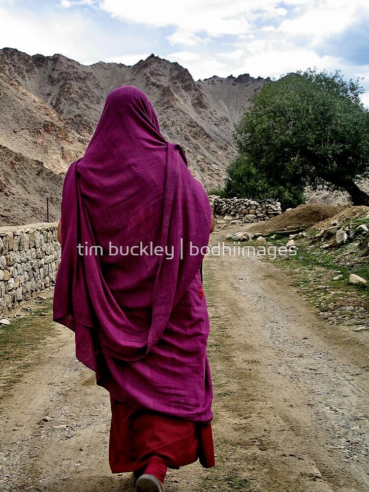 path. buddhist monk, ladakh, india by tim buckley   bodhiimages