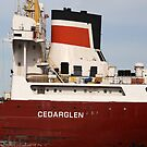 Cedarglen Closeup 061518 by marybedy