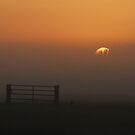 The gate and the rising sun by jchanders
