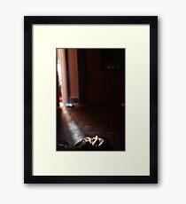 Seen Framed Print