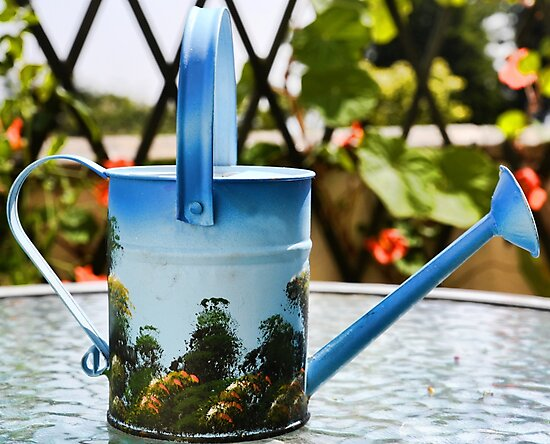 Watering Can by lynn carter