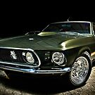 Mean Mustang! by Mick Smith
