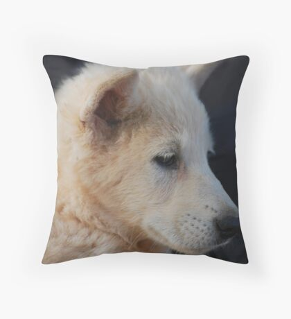 Wolf Cub Throw Pillow