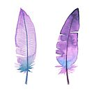 Blue and purple feathers by pekenyuskula