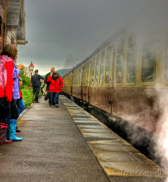 On The Platform  - Levisham Station by Trevor Kersley