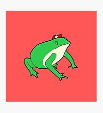 Slippy Toad Photographic Print