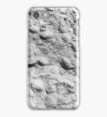 Brachiopod fossils from Usk, Monmouthshire iPhone Case/Skin