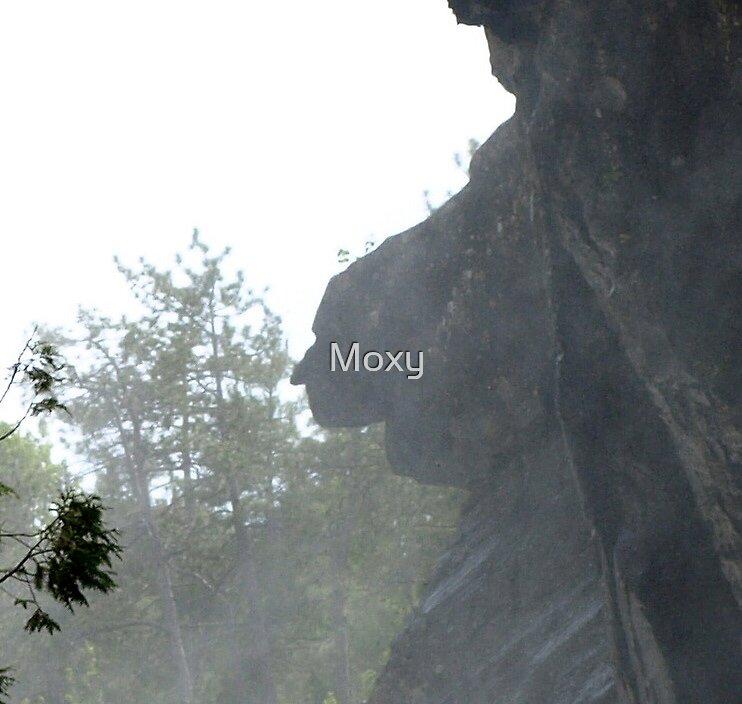 « The Face of Dorwin Falls in Rawdon » par Moxy
