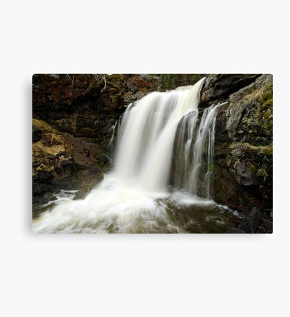 Moose Falls - Yellowstone National Park Canvas Print