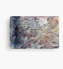 Brachiopod fossil from Usk, Monmouthshire Canvas Print