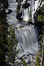 Kepler Cascades - Yellowstone National Park by Stephen Beattie