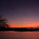 Sunrise 200509 by Ron  Wilson