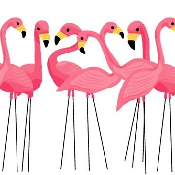 Pink flamingos by unknownurl