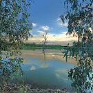 Framed - Wonga Wetlands - The HDR Experience by Philip Johnson