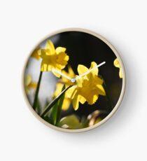 Daffodils  Clock