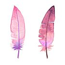 Pink feathers by pekenyuskula