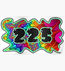 ABSTRACT, GROOVY, AND PSYCHEDELIC 225 DESIGN - VIBRANT COLORS WITH YOUR FAVORITE AREA CODE Poster