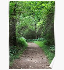 The Enchanted Path Poster