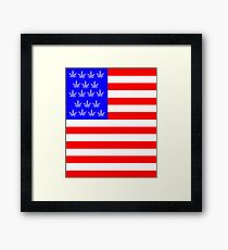 American Flag USA with Pot leaves cannabis Red white and Blue Framed Print