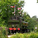 Locomotive 1369 Approaching Buckfastleigh by lezvee