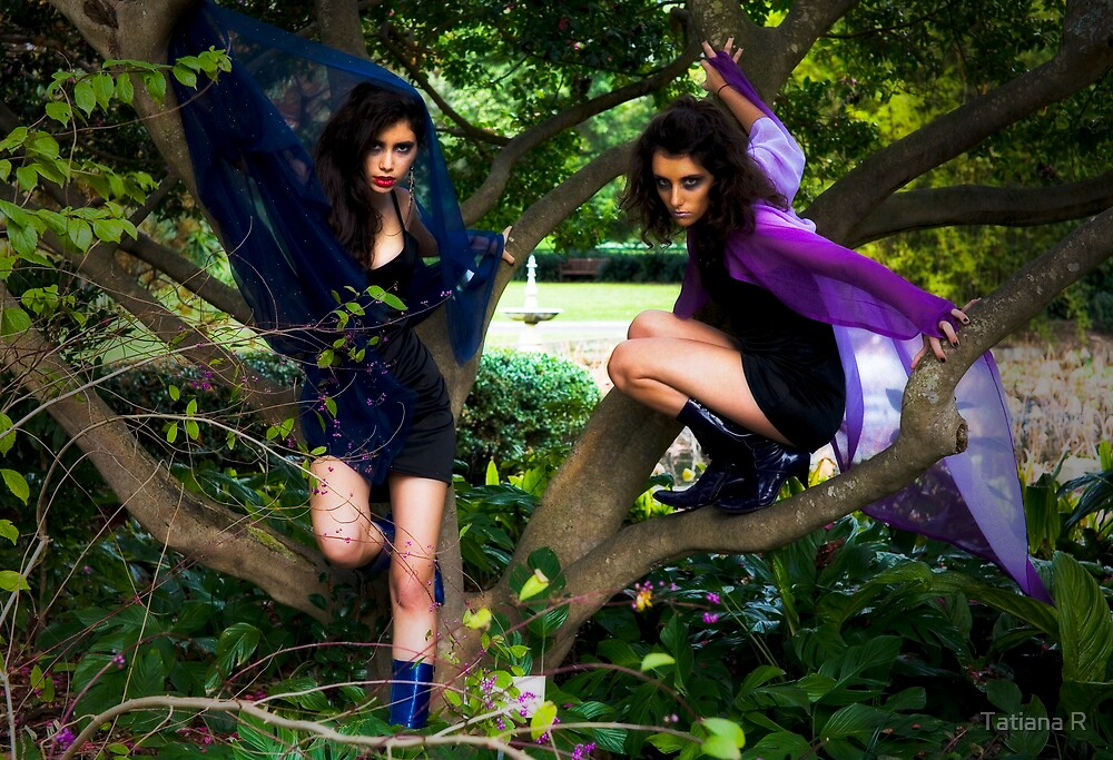 Two Bad Fairies by Tatiana R