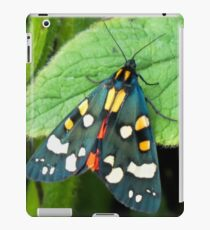 Tiger Moth.........Lyme Regis. Dorset UK iPad Case/Skin