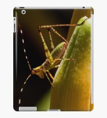 Scouting the Neighborhood iPad Case/Skin