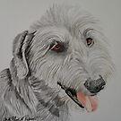 Irish Wolfhound by Anita Putman