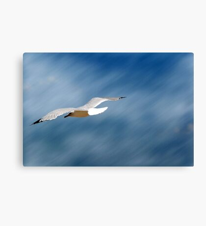 Higher Plane of Existence Canvas Print