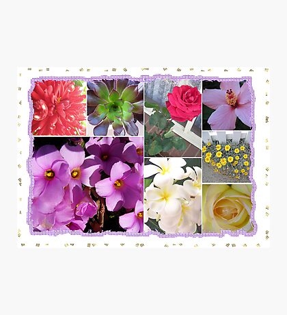 Flowers Galore Collage Photographic Print