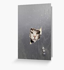 Here's Kitty- Funny cat picture Greeting Card